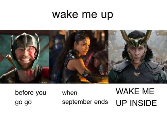 There are 3 kinds of people and I am Loki in this << I'm Thor XD