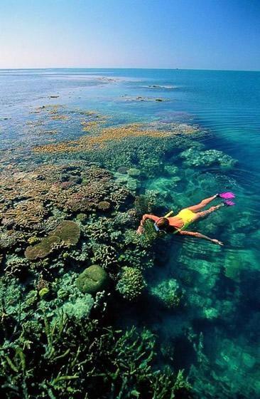 Snorkel in the Great Barrier Reef in Australia
