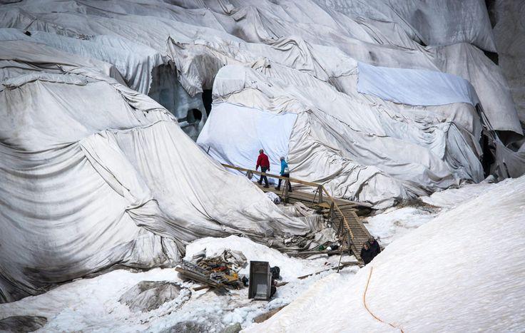 Il #ghiacciaio del #Rodano, sulle #Alpi svizzere, viene ricoperto per limitarne lo scioglimento.