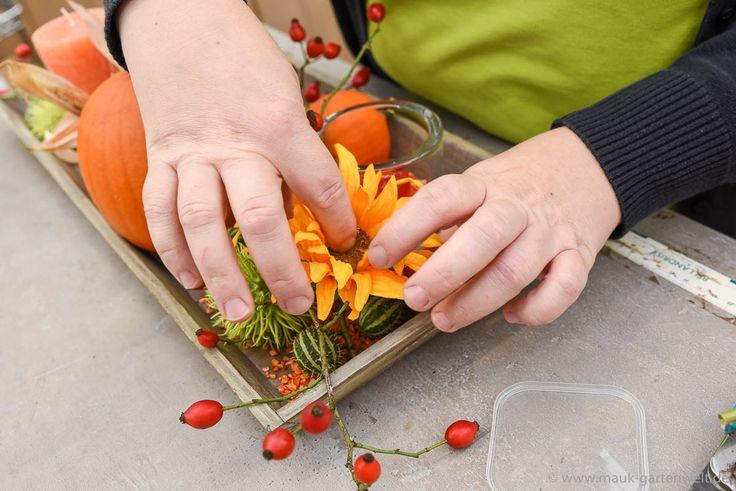 Schritt 5: Früchte uns Sonnenblumen nach Belieben verteilen...