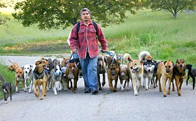 I have a feeling this is going to be me one day... hahahaha    Cesar Milan