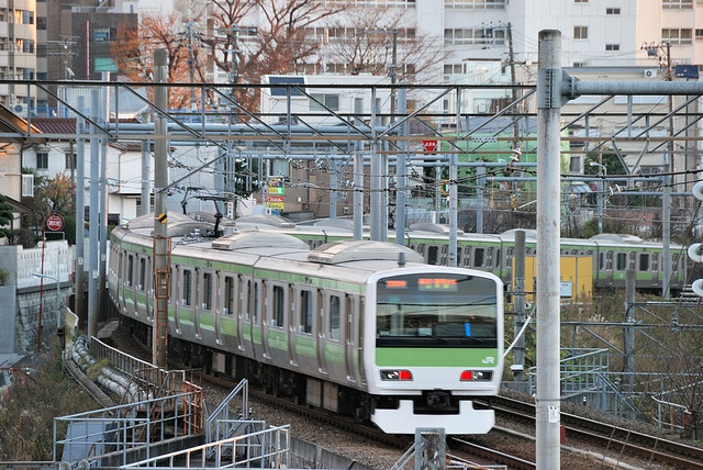 Yamanote Line Train at the South of Ebisu Garden Place by ykanazawa1999, via Flickr