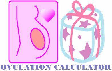 Menstrual Cycle Calculator