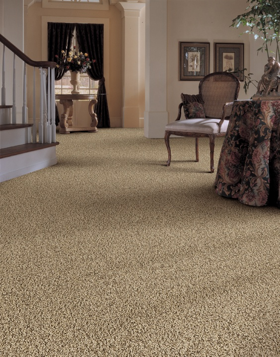 cheap living room carpets houzz no fireplace denali bluffs contemporary frieze carpet | avalon ...