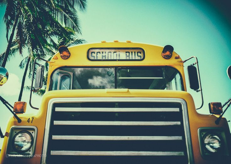 bus photography,original school art print yellow photo hawaii picture vehicle wall art car print vintage décor turquoise Palm tree film by KaleidoscopesPHOTO2 on Etsy