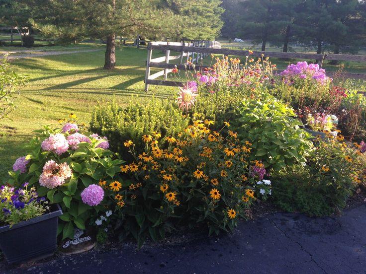 Garden Ideas Zone 6 361 best home garden ideas images on pinterest | garden ideas