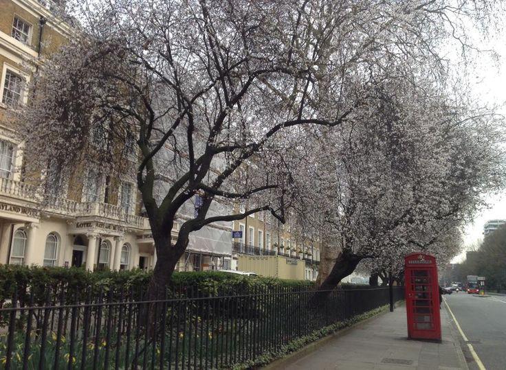 Londra cosa fare