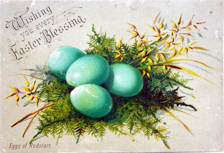 View full size: Vintage Cards Eggs, Victorian Easter, Easter Postcards, Easter Cards, Vintage Easter, Valentines Day, Robins Eggs, Easter Blessed, Vintage Image