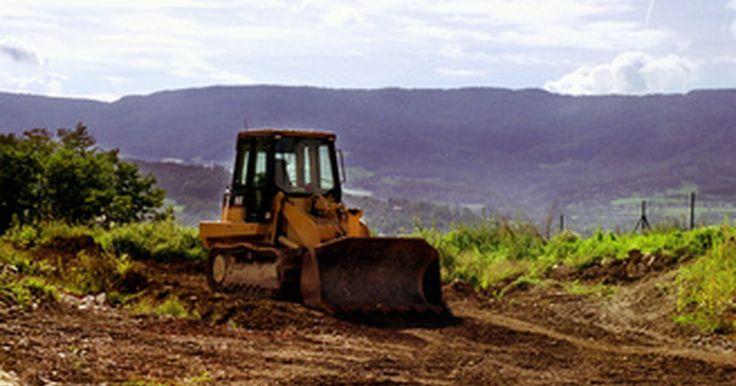 ¿Qué especies están siendo afectadas por la deforestación en el Amazonas?. Mientras que la selva amazónica puede evocar visiones de aventura con animales exóticos, también hay que recordar las graves amenazas a la selva y sus habitantes. Según el Fondo Mundial para la Naturaleza, si la deforestación o la tala de árboles continúa como lo ha sido, el 55 por ciento de la selva amazónica podría desaparecer para el año 2030. ...