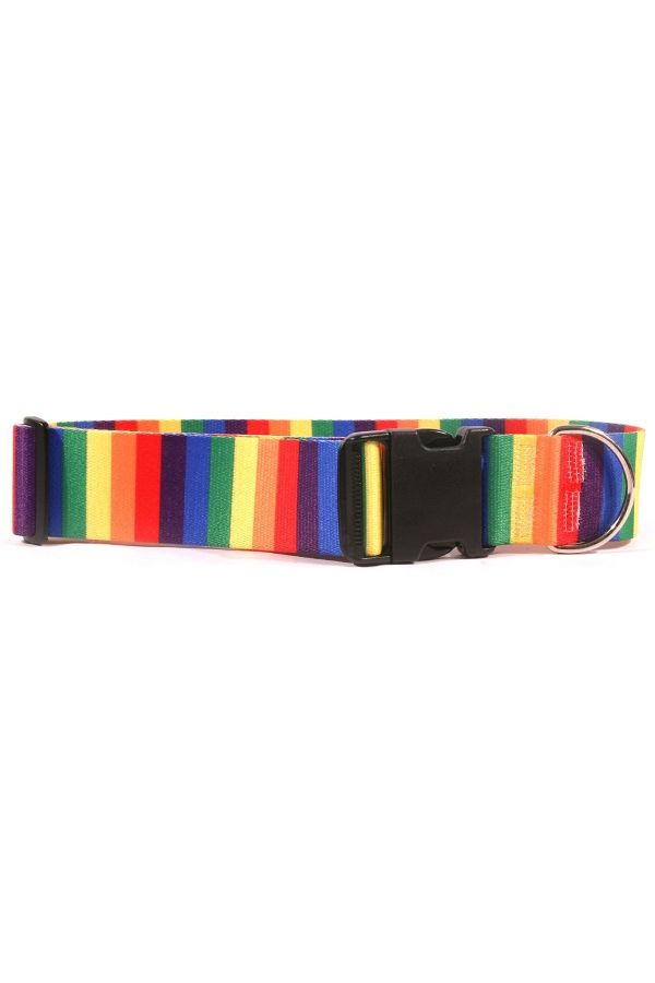 2 Inch Wide 🌈  #Rainbow 🐶 Dog Collar - Free Shipping @ $50 - Extra wide collar made of 100% vibrant color-fast polyester - Let your dog make a fashion statement! 💰 Save 15% on ALL 2 inch collars w/coupon DOGLUV @ checkout! #MadeinUSA #dogcollars