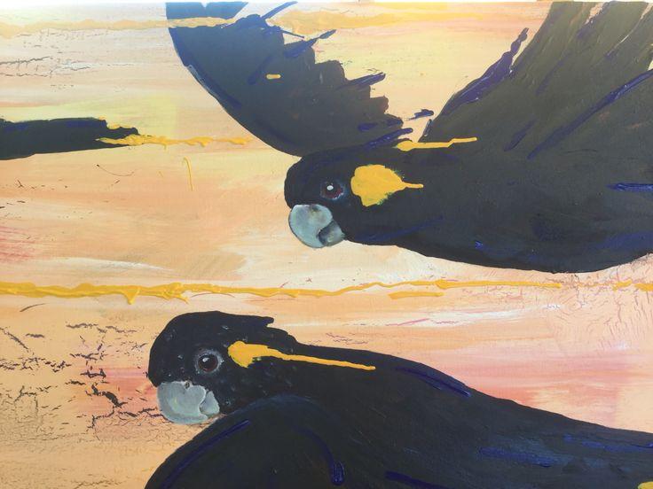 Yellow tail black cockatoo acrylic on canvas