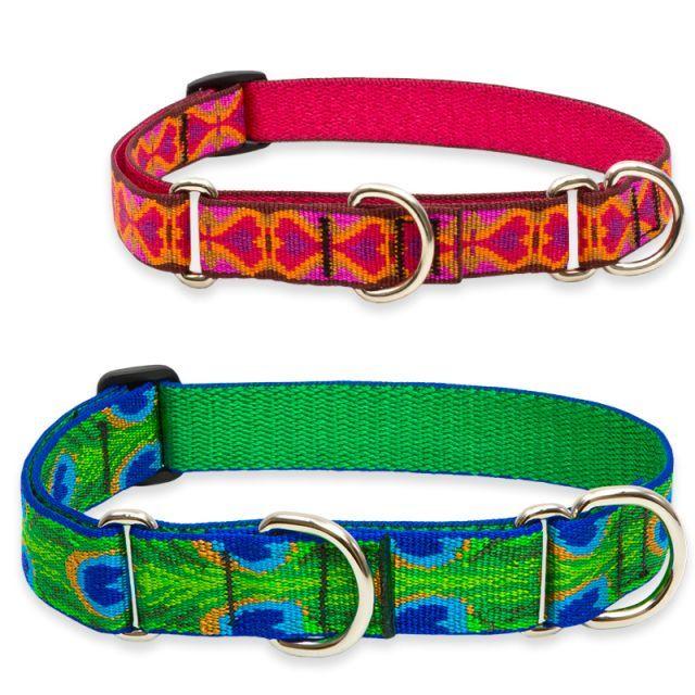 Original Designs Martingale Training Collar Love These Collars