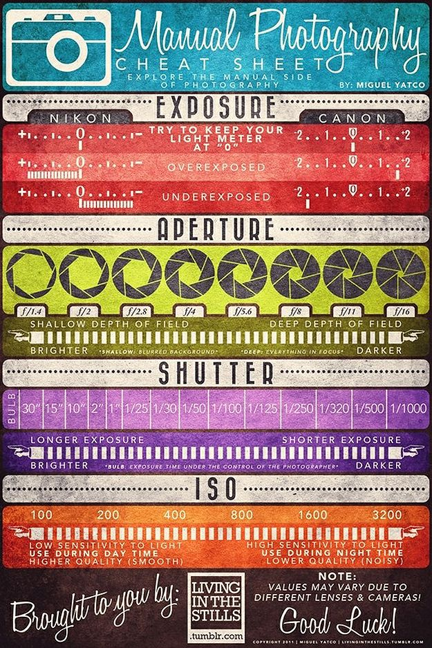 photography cheat sheet! how cool is this. i hope to finally learn how to use my camera, properly! RL