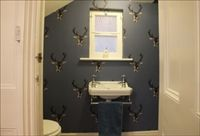 The quirky downstairs cloakroom, Brighton, Sussex