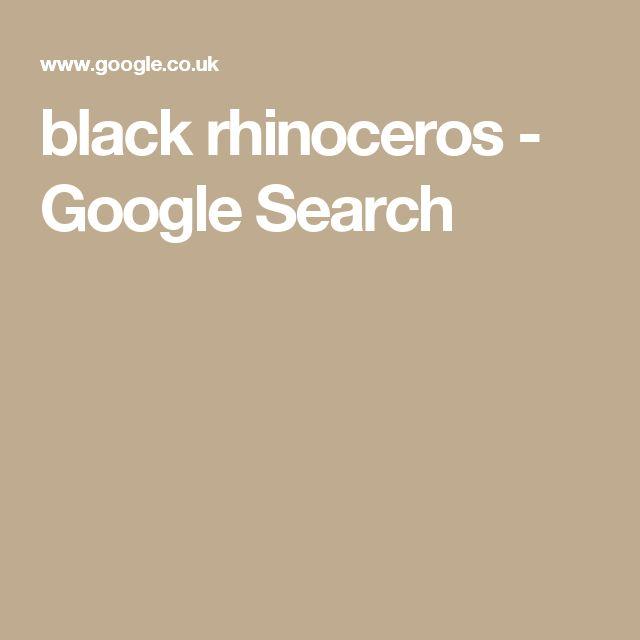 black rhinoceros - Google Search