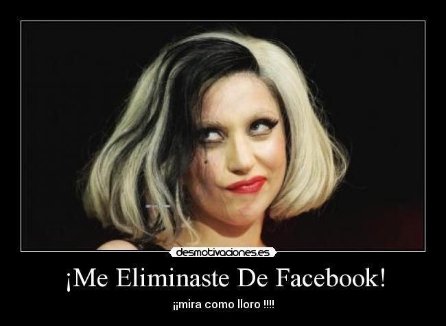 memes de lady gaga para facebook - Buscar con Google