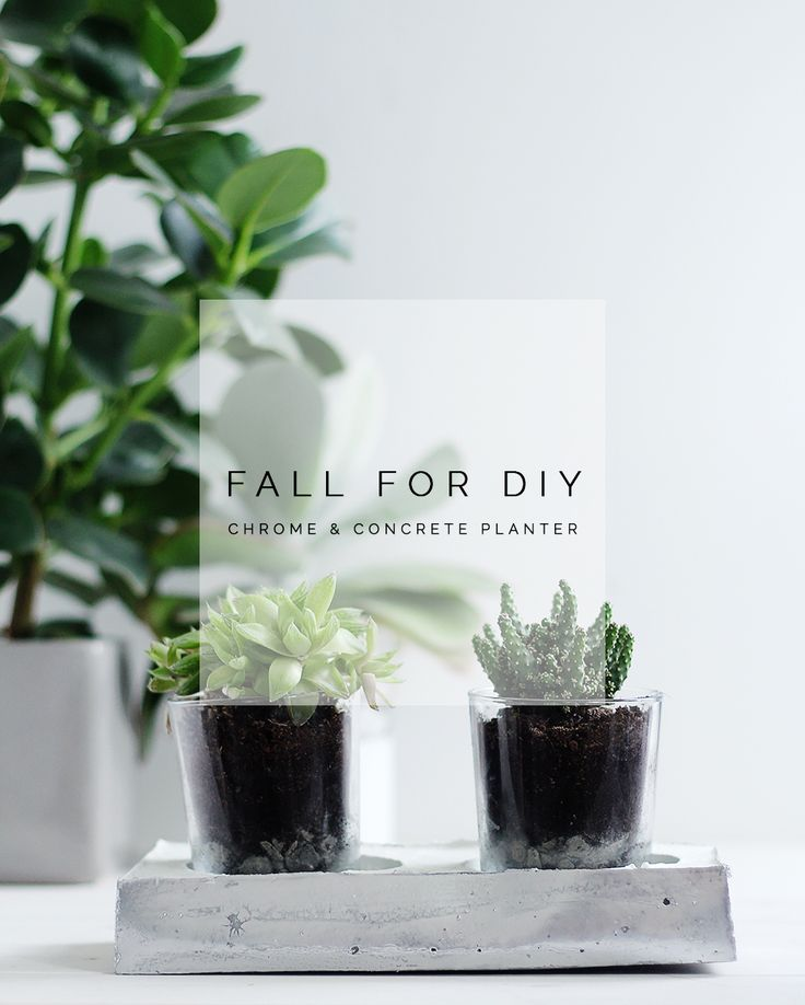 Fall For DIY Chrome and Concrete Planter