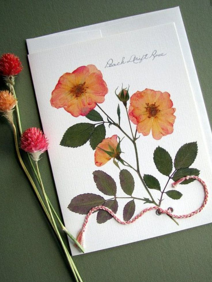 Открытки флористика, поздравлением нового года