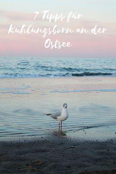 Mit diesen 7 Reisetipps könnt ihr den perfekten Urlaub in Kühlungsborn an der Ostsee erleben.