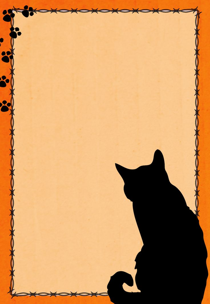 Best 25 Cat Clipart Ideas On Pinterest Black Cat