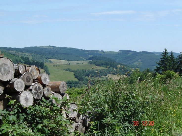 Somewhere near 'Joux', France.