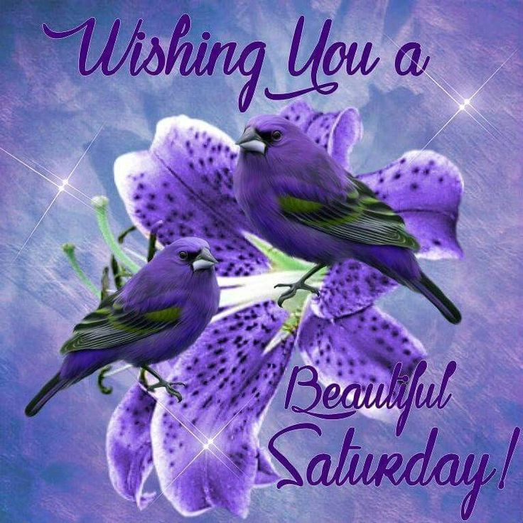 Wishing You A Beautiful Saturday saturday saturday quotes saturday images