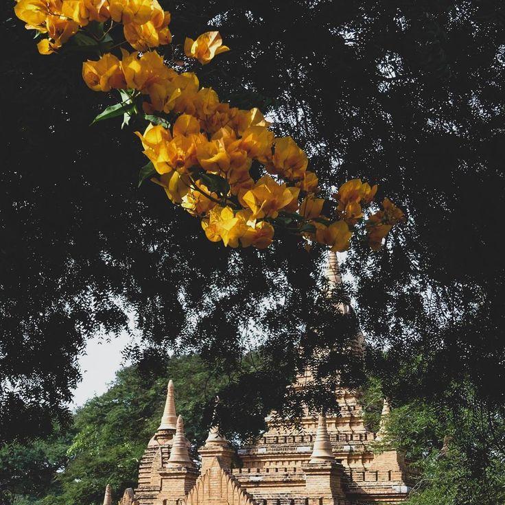 Pin di luca cipriani su vietnam