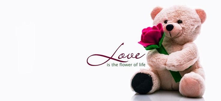 Beautiful Happy Teddy Bear Day Cover Pics for Facebook and FB