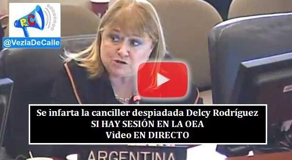 ¡ATENCIÓN! SÍ HAY Sesión En La OEA Sobre Hambruna En Venezuela. El Mundo No Puede Callar VIDEO EN DIRECTO
