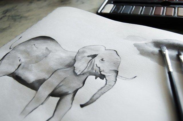 elephants-dafrique