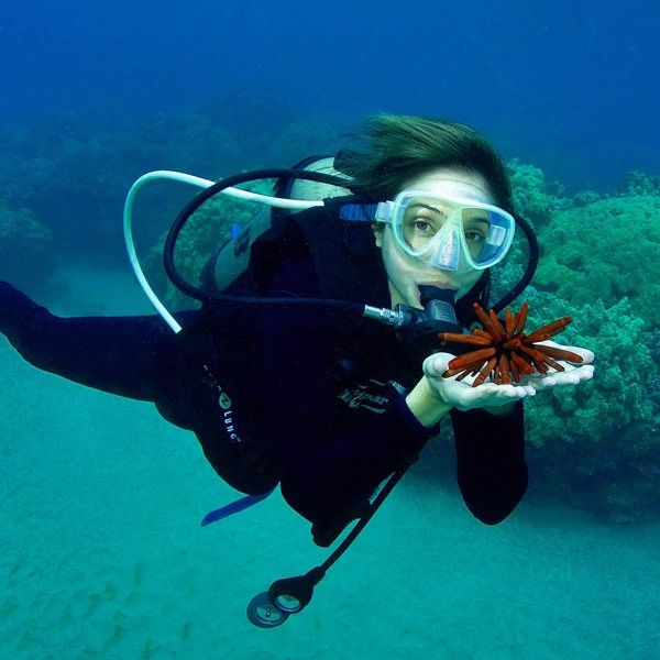 Every Maui dive is a PRIVATE dive experience that provides the best #scuba #diving on Maui.http://mauiticketsforless.com/maui-scuba-diving/maui-scuba-diving-tiny-bubbles.html#.VOUOU9w0zIU