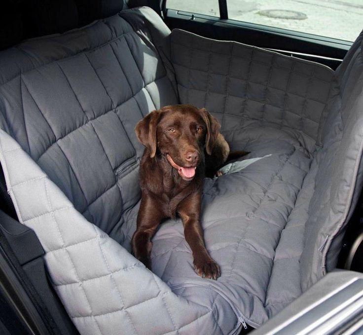 12 besten hunde unterwegs bilder auf pinterest hund. Black Bedroom Furniture Sets. Home Design Ideas