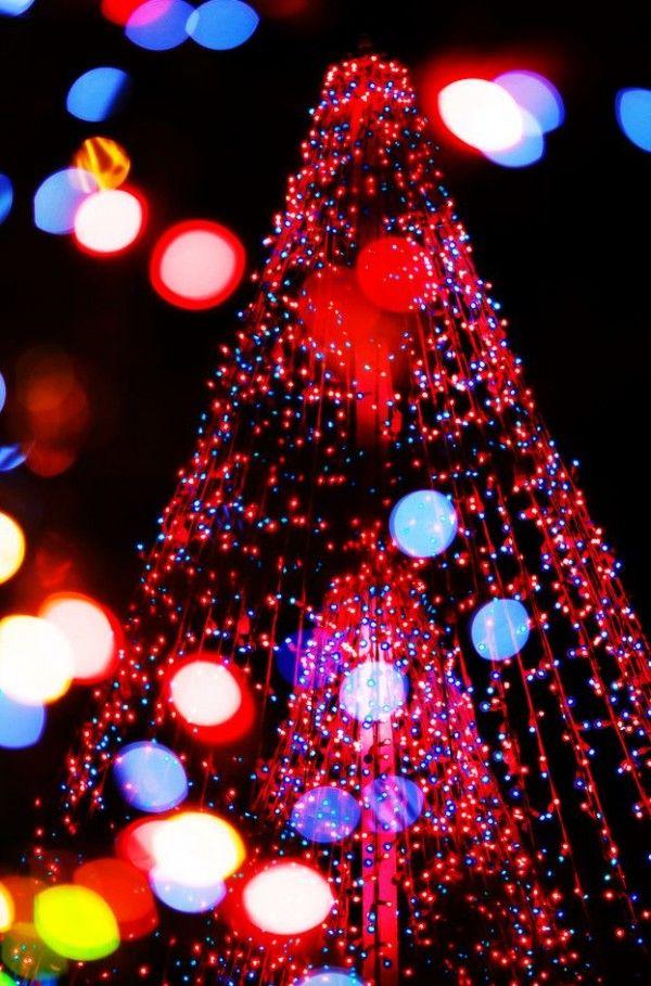 best images about outdoor solar christmas lights on pinterest trees. Black Bedroom Furniture Sets. Home Design Ideas