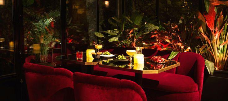 Do it in Paris vous a déniché 8 adresses complètement insolites : déjeuner dans une boucherie, apéro dans une gigantesque cave ou un boudoir en sous-sol et café chez un brocanteur... Tout ce qu'il faut, pour changer un peu de vos week-ends redondants !