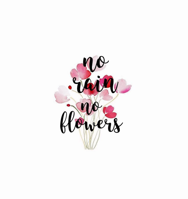 no rain no flowers:::hand lettering
