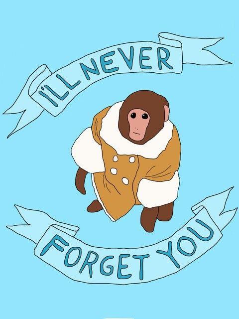 25 best ikea monkey images on pinterest doge ikea and