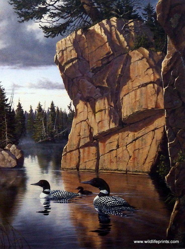 Wildlife Artist Derk Hansen Unframed Loon Print Nature's Medley-Loons | WildlifePrints.com