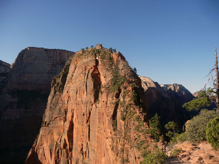 The best hikes in Zion National Park: from wading through the Virgin River to the steep rocks of Angels Landing: check the best hikes out here!