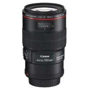 The Canon 100mm f2.8L IS macro lens is the best Canon macro lens available. This lens is not only super sharp but it also has image sabilisation technology to make sure your macro images are never blurry. If you like crawling around on your hands and knees looking for insects and mini beasts to photograph this is the ideal Canon macro lens for you.