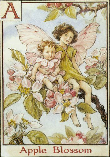 I love all of the flower fairies by illustrator Cicely Mary Barker, but the Apple Blossom fairies are my favorite....especially the baby.