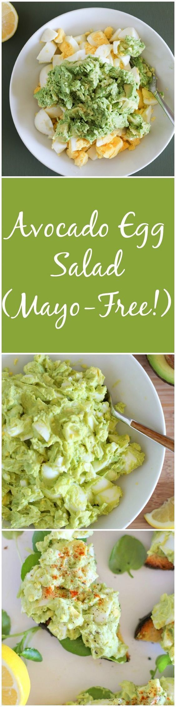 Avocado Egg Salad (Mayo Free).Adding an avocado to any salad is a tasty and healthy decision, as avocado itself creates that perfect creamy texture making the salad so delightful.nd it makes it possible to avoid adding any excess and useless fats, like mayo. Make this avocado egg salad with this great recipe and enjoy this wholesome tastiness!
