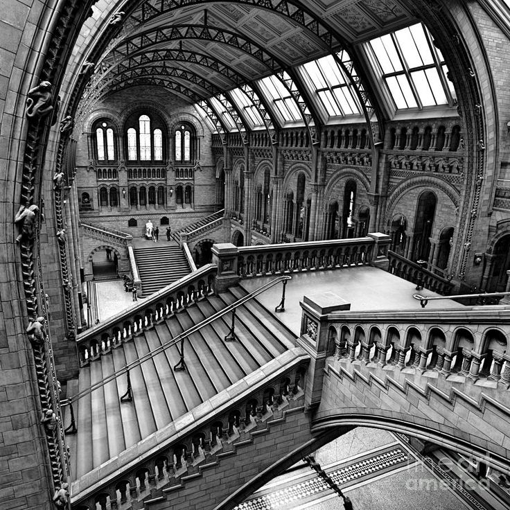 Escher View of The Natural History Museum London. pretty awesome!