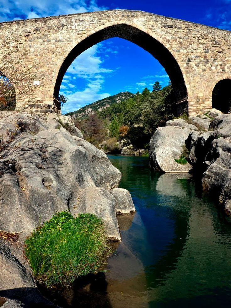 Llobregat river and The Pedret Bridge (Catalonia) / Pont de Pedret sobre el riu Llobregat (Catalunya)