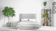 Piante e fiori in camera da letto? Quali scegliere