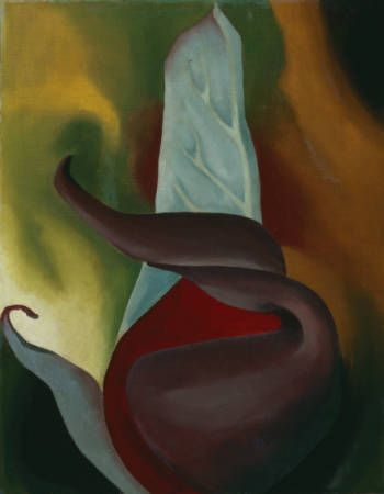 Georgia O'Keeffe (American, Sun Prairie, Wisconsin 1887–1986 Santa Fe, New Mexico)  Skunk Cabbage :: Drawings, Paintings & Sculpture