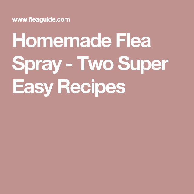 Homemade Flea Spray - Two Super Easy Recipes