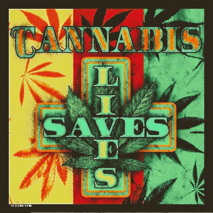 cannabis growing guide free pdf