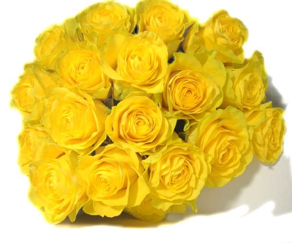 Roses are yellow... Violets are blue... who cares what color... as long as they're from you.    ;-)