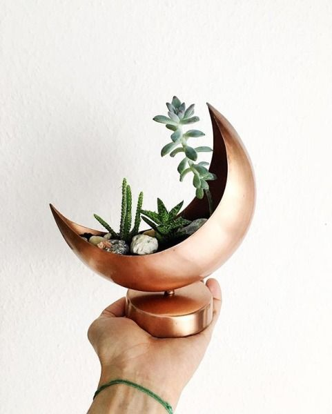 Copper Crescent moon plant holder