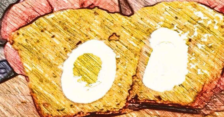 Маффин с кукурузной мукой, ветчиной и яйцом Завтрак должен быть полезным, вкусным, а если еще и интересным с секретом, то точно будут просить добавки. В рецепте используется обычное куриное яйцо, но это все можно превратить из завтрака с салатом в мини закуски общей подачи к столу, подробности в ссылке ... #маффин #завтрак #breakfast #cupcake #muffin